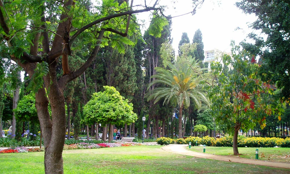 Air quality in Marbella 3rd best in Spain - Constitution Park Marbella