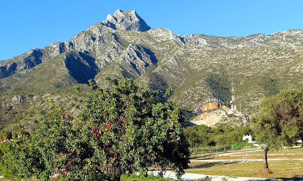 Parque Pinar de Nagüeles Marbella