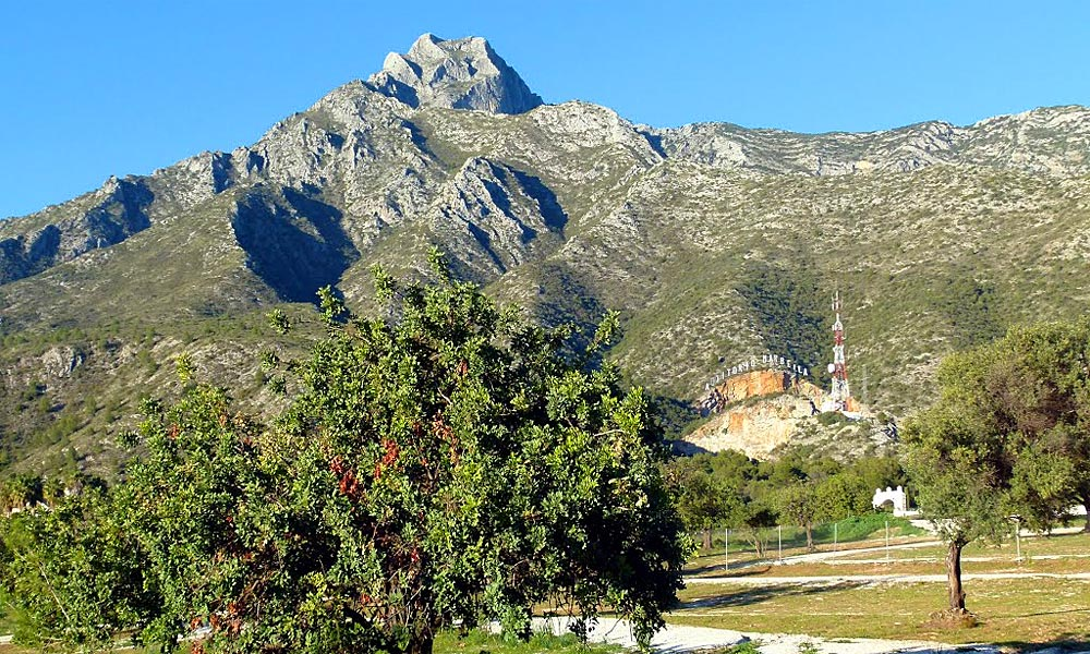 Pinar de Nagüeles Park Marbella