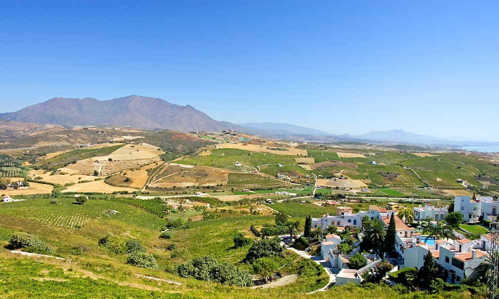Oenotourisme à Malaga, Montes de Malaga, Manilva