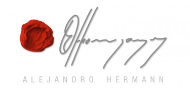 Alejandro Hermann