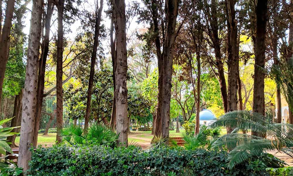 Constitution Park Marbella